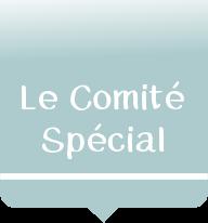 Comité Spécial
