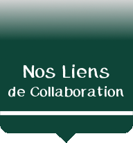 Nos Liens de Collaborations
